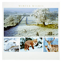 Buy Woodmansterne Winter Snow Scene Christmas Card Online at johnlewis.com
