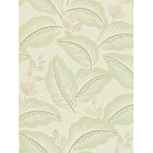 Buy Sanderson Box Hill Wallpaper Online at johnlewis.com