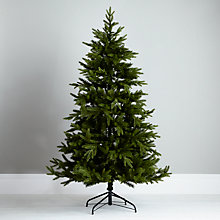 Buy John Lewis Mountain Pine Christmas Tree, Green, 6ft Online at johnlewis.com