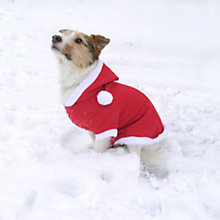 Buy Rosewood Santa Dog Coat Online at johnlewis.com
