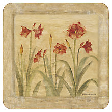 Buy Pimpernel Amyryllis Coasters, Set of 6, Multi Online at johnlewis.com