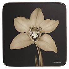 Buy Pimpernel Ebony Orchid Coasters, Set of 6 Online at johnlewis.com