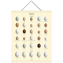 Buy Newgate Eggs Canvas Banner, 98 x 76cm Online at johnlewis.com