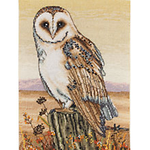 Buy Anchor Owl Cross Stitch Kit Online at johnlewis.com
