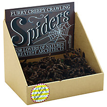 Buy Seedling Furry Creepy Crawly Spiders Online at johnlewis.com