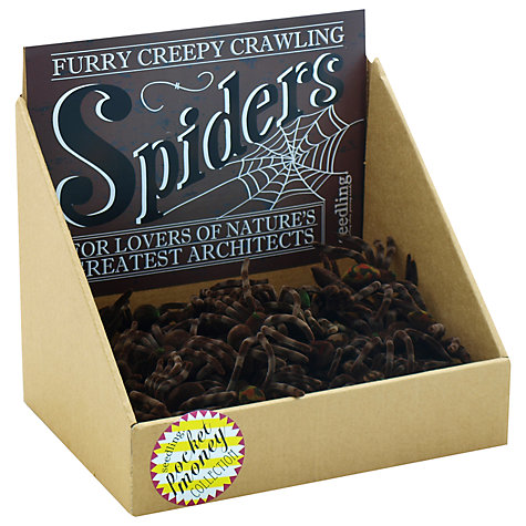 Buy Seedling Furry Creepy Crawly Spider Online at johnlewis.com