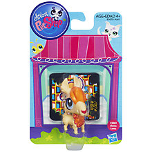 Buy Littlest Pet Shop Single Pets, Assorted Online at johnlewis.com