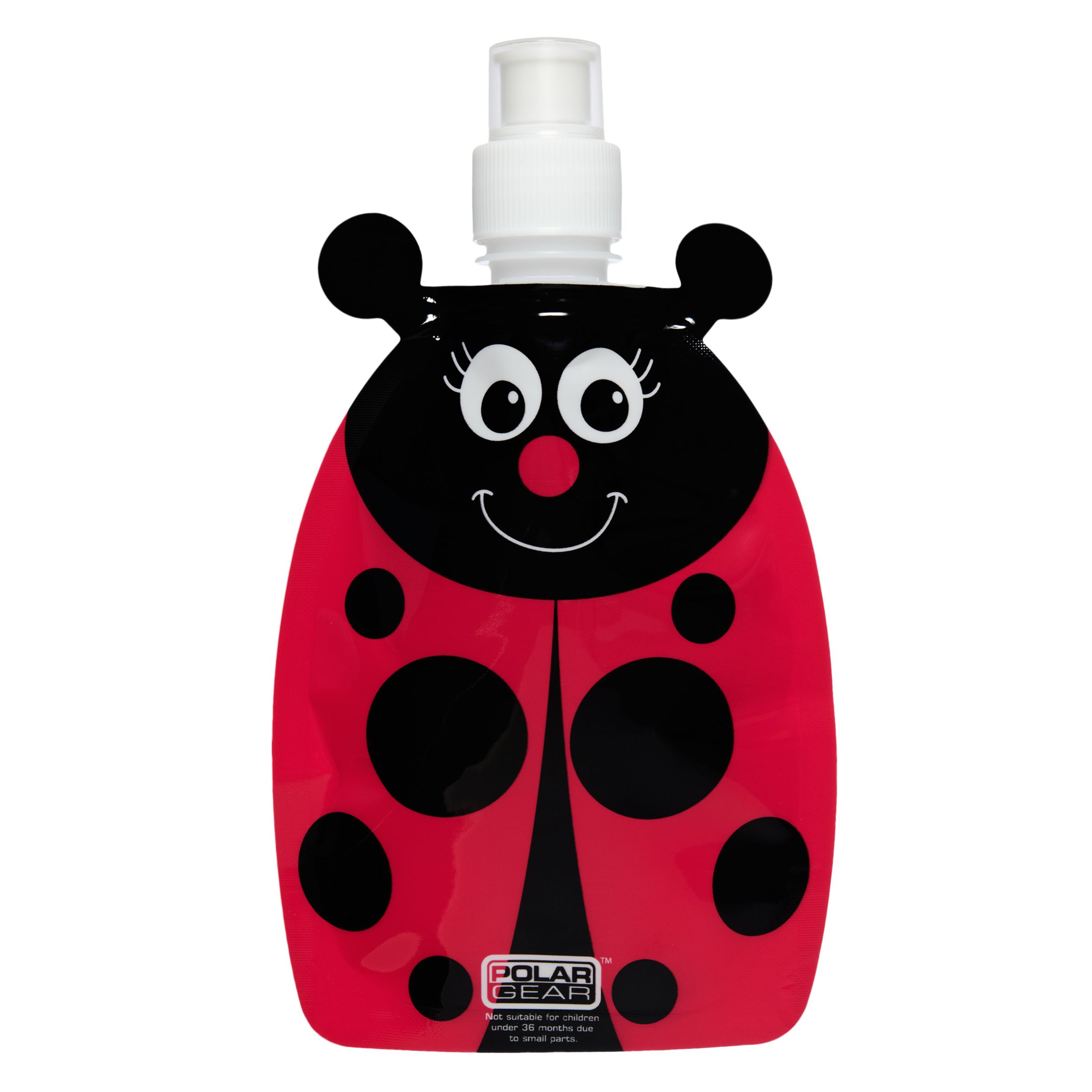 DNC Ladybird Bug Drinks Bottle