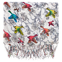 Buy Warehouse Stripe Bird Print Scarf Online at johnlewis.com