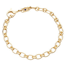 Buy Astley Clarke Charms 18ct Gold Vermeil Gold Charm Bracelet Online at johnlewis.com