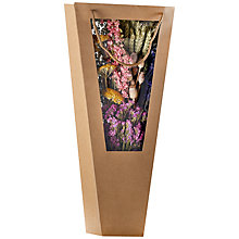 Buy Winterflora Dried Flower Bag, Pink Online at johnlewis.com