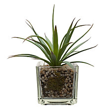 Buy House by John Lewis Artificial Mini Aloe Plant Online at johnlewis.com