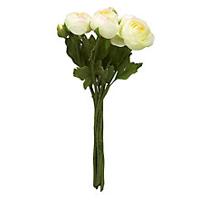 Buy John Lewis Ranunculus Flower Bunch, Cream Online at johnlewis.com