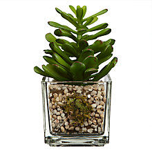 Buy House by John Lewis Artificial Mini Cactus, H11cm Online at johnlewis.com
