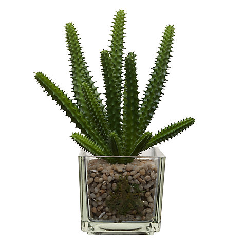 Buy House by John Lewis Artificial Mini Cactus, H20cm Online at johnlewis.com