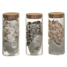 Buy Shells And Sand In Glass Pots, Assorted Online at johnlewis.com