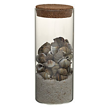 Buy Shells And Sand In Glass Pot, Assorted Online at johnlewis.com