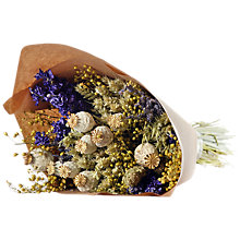 Buy Winterflora Dried Posy Bunch, Blue Online at johnlewis.com