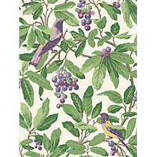 Buy Cole & Son Royal Garden Wallpaper Online at johnlewis.com