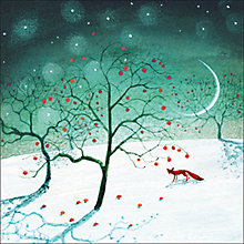 Buy Almanac Apples In The Snow Charity Christmas Cards, Box of 8 Online at johnlewis.com