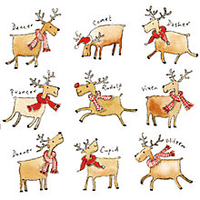 Buy Almanac Rudolph's Gang Charity Christmas Cards, Box of 8 Online at johnlewis.com