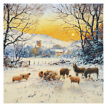Buy Almanac Winter Sun Charity Christmas Cards, Box of 8 Online at johnlewis.com