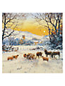 Almanac Winter Sun Charity Christmas Cards, Box of 8