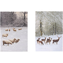 Buy UK Greetings Special Editions Sheep And Deer Charity Christmas Cards, Box of 8 Online at johnlewis.com