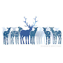 Buy UK Greetings Special Editions Foil Deer Charity Christmas Cards, Box of 8 Online at johnlewis.com