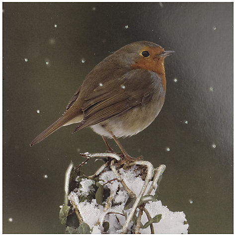 Buy UK Greeting Special Editions Glitter Robin Charity Christmas Cards, Box of 8 Online at johnlewis.com