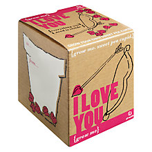 Buy I Love You Sweet Pea Seeds Gift Set Online at johnlewis.com