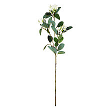 Buy Floral Silk Stephanotis Spray Online at johnlewis.com