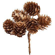 Buy John Lewis Mini Pine Cones, Gold Online at johnlewis.com