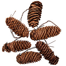 Buy John Lewis Large Pine Cones, Pack of 6 Online at johnlewis.com