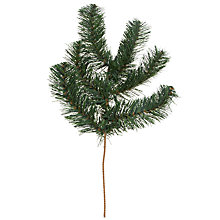Buy John Lewis Douglas Branch Sprig, 40cm, Green Online at johnlewis.com