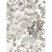 Buy Designers Guild Roseus Wallpaper Online at johnlewis.com