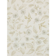 Buy Sanderson Bird Blossom Wallpaper Online at johnlewis.com