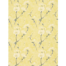 Buy Sanderson Eleni Wallpaper Online at johnlewis.com