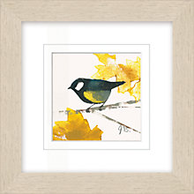 Buy Julia Burns - Red Hen Great Tit Framed Potato Print, 35 x 35cm Online at johnlewis.com