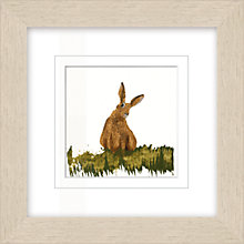 Buy Julia Burns - Red Hen Rabbit Framed Potato Print, 35 x 35cm Online at johnlewis.com