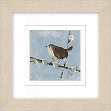 Buy Julia Burns - Red Hen Jenny Wren Framed Potato Print, 35 x 35cm Online at johnlewis.com