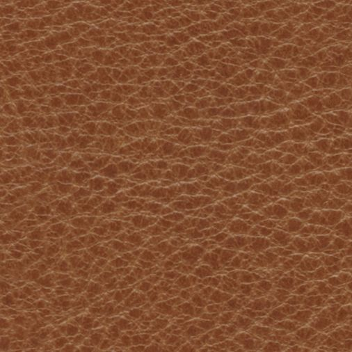 Oak Natural Leather