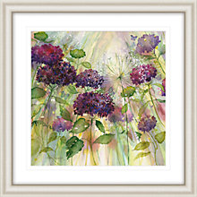 Buy Catherine Stephenson - Purple Hydrangea Framed Print, 90.5 x 90.5cm Online at johnlewis.com