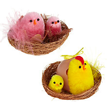 Buy John Lewis Fluffy Chick In Basket, Assorted Online at johnlewis.com