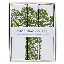 Buy Thornback & Peel Sprout Handkerchiefs, Pack of Three, Green Online at johnlewis.com