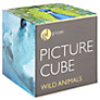 Buy Gallery One Wild Animals Picture Cube Game Online at johnlewis.com