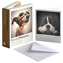 Buy Gallery One Cats & Dogs Polaroid Moments Greeting Cards, Pack of 20 Online at johnlewis.com
