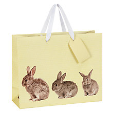 Buy John Lewis Rabbits Gift Bag, Multi Online at johnlewis.com