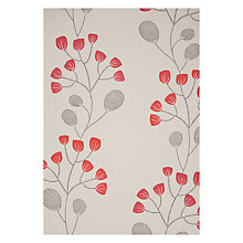 Buy John Lewis Seedlings Wallpaper Online at johnlewis.com