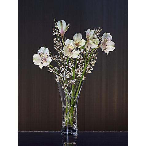 Buy Dartington Crystal Dragonfly Vase Small John Lewis